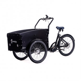 Cargo Bike Delight 8 vxl 2021