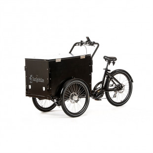 Cargobike Delight Box 2021